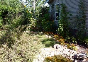 Belle's Yard