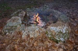 Firepit (4)