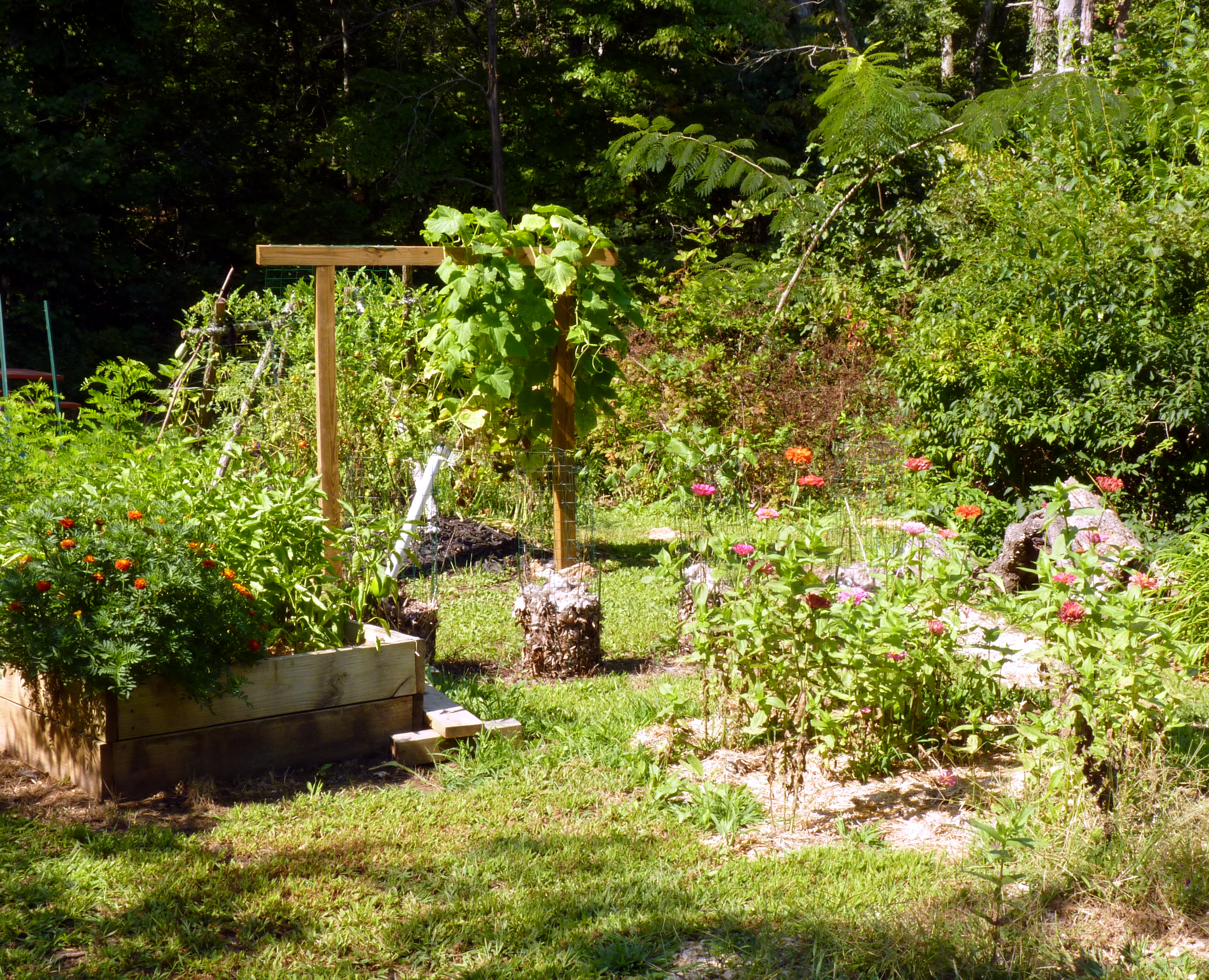 looking access easier gardening proper raisedbedgardening have those are garden excellent beds raised for don options t a soil way to traditional who gardens mixes bed vegetable or an