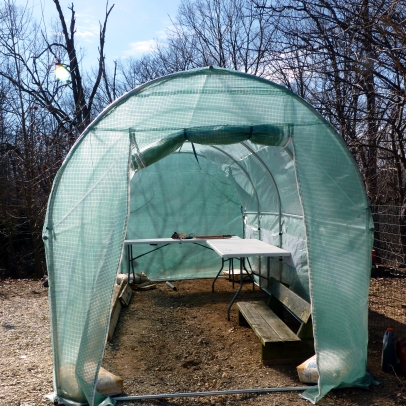 GreenhouseInside